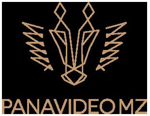 PANAVIDEO